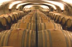 Napa Wine Tours | Sonoma Wine Tours