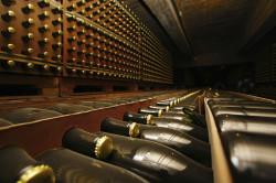 Napa Wine Tours